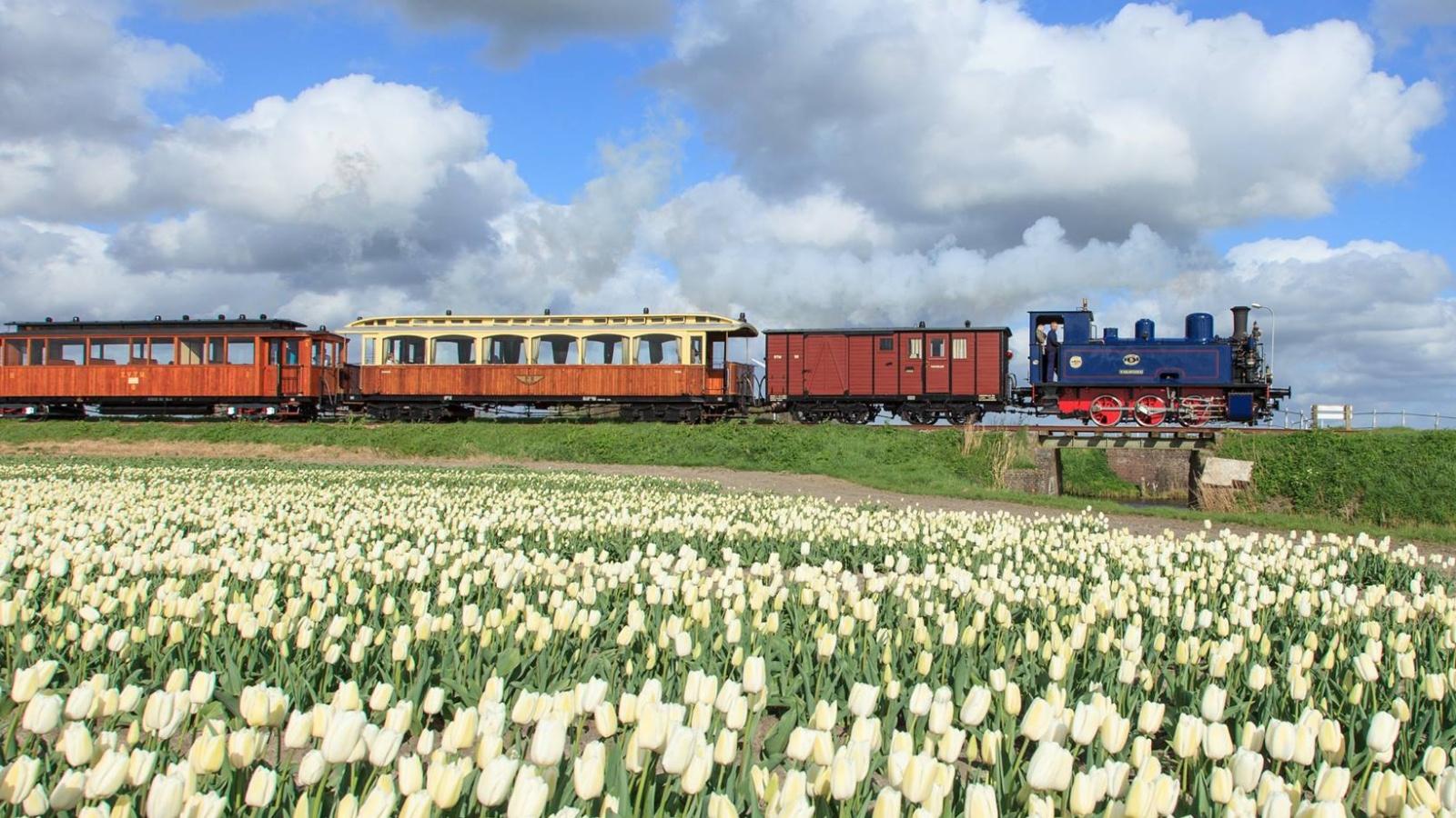 schamll-steam-train-nl